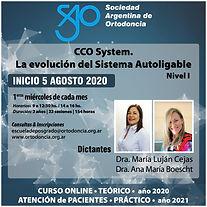 Curso Online Dra. Cejas.jpg