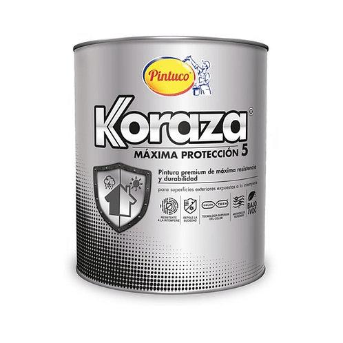 Koraza vinilo tipo 1 exteriores