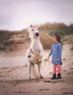 Ponys_037__.jpg