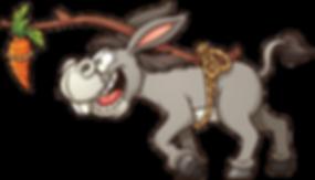 donkey c.png