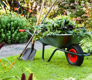 As the seasons shift, so do the needs of your lawn and landscaping.