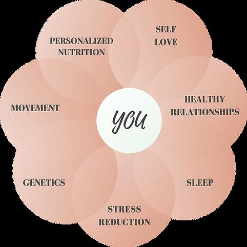 approach to wellness web