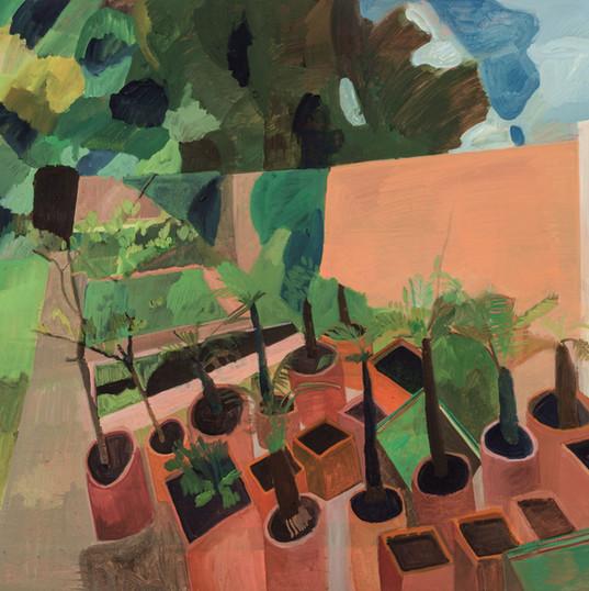 Materas y jardín