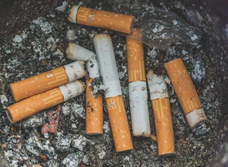 Noemia Rocha quer o destino correto das bitucas de cigarro