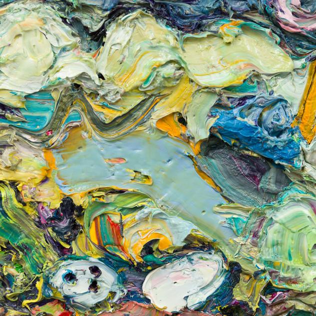 Sea  Shells close up 2.jpg