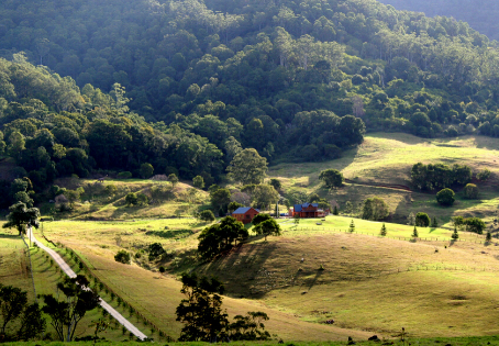 5 Surprising Reasons to Live on Acreage