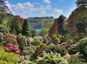 Cornish Gardens.jpeg