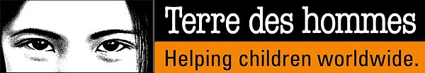 logo_tdh_english_web_f38500_0.png