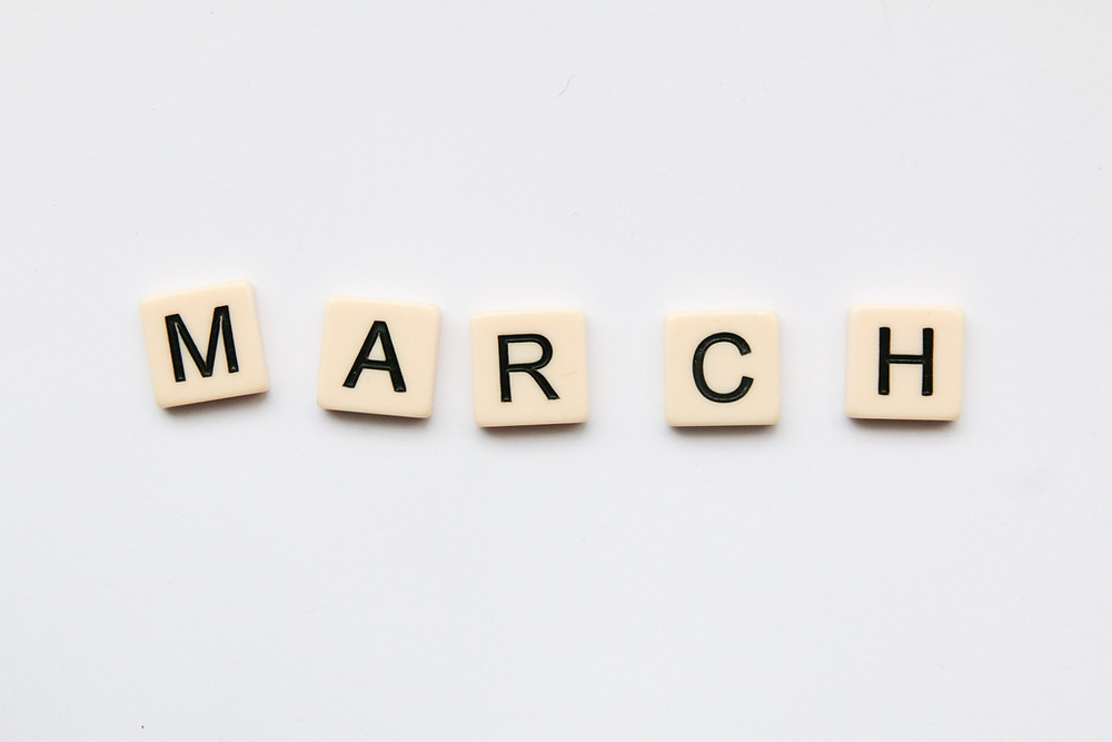 Best reads of March 2021 - Veganism, Animals, Environment (Image courtesy: Glen Carrie on Unsplash)