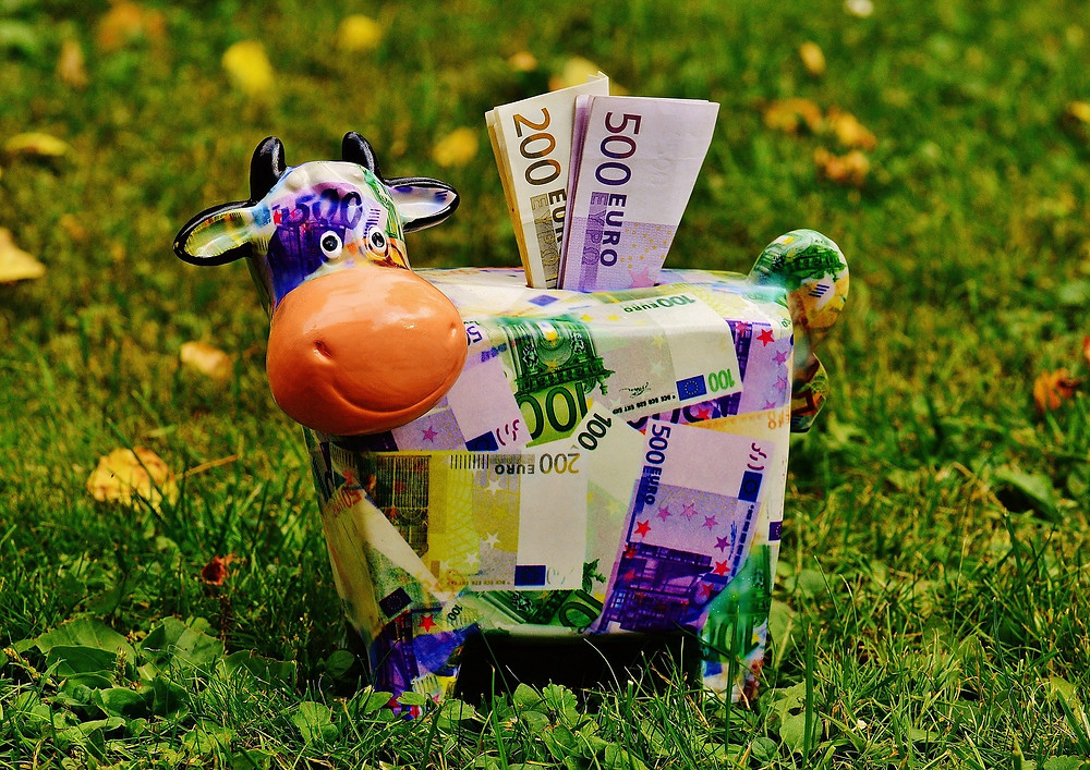 Euro banknotes in the piggy bank! (Image by Alexas_Fotos from Pixabay)