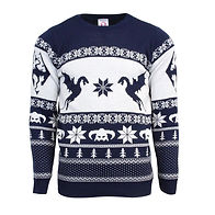Skyrim Christmas sweater.jpg