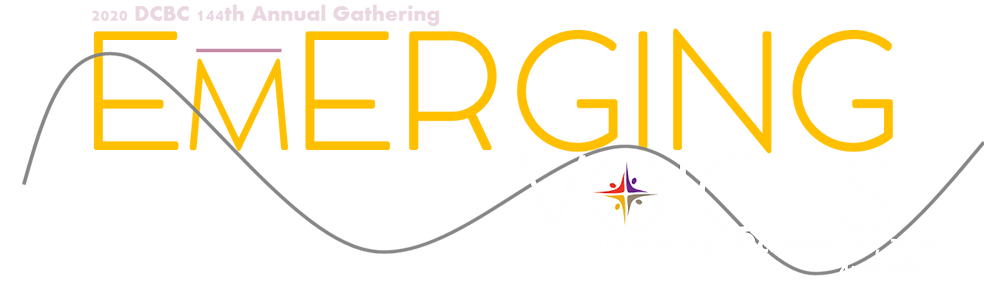 Emerging Voices logo.png