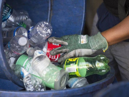 Canning Recycling Centers in California Could Mean Less Cash for Vietnamese Recyclers
