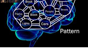 How Our Brain Learns