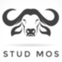 Stud Mos.jpg