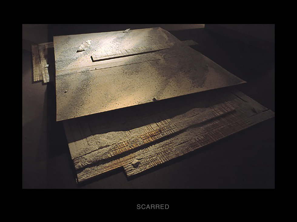 3-Scarred-view1.jpg