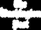 washington-post-logo_500x500_White.png