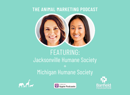 The Animal Marketing Podcast, Episode 13: Banfield Foundation Series with Kim Van Syoc