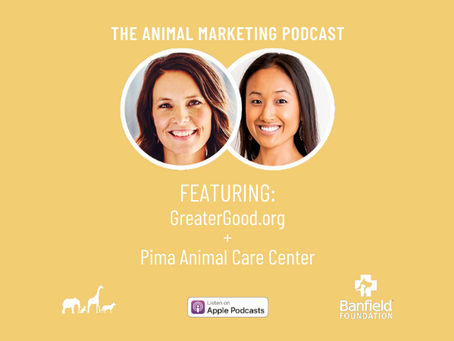 The Animal Marketing Podcast, Episode 12: Banfield Foundation Series with Kim Van Syoc