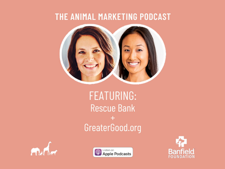 The Animal Marketing Podcast, Episode 14: Banfield Foundation Series with Kim Van Syoc