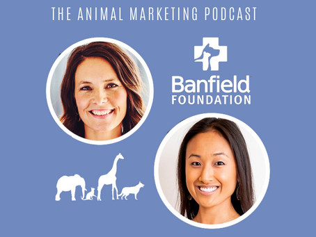 The Animal Marketing Podcast, Episode 11: Banfield Foundation Series with Kim Van Syoc and Guests
