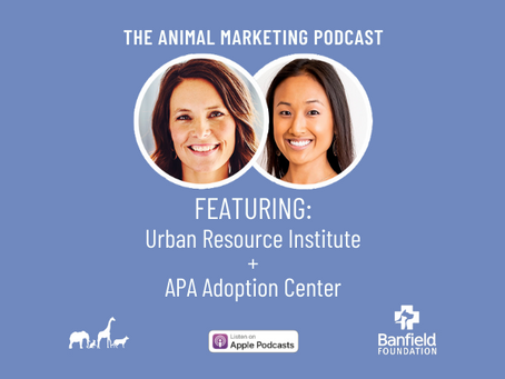 The Animal Marketing Podcast, Episode 15: Banfield Foundation Series with Kim Van Syoc