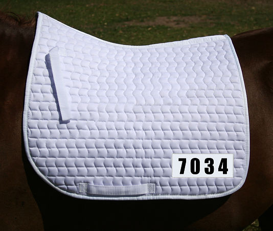 numbered dressage.jpg
