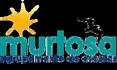 Logo do Agrupamento da Escolas Murtosa