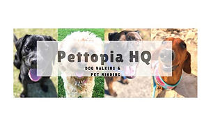 PettopiaHQLogoWeb_edited.jpg