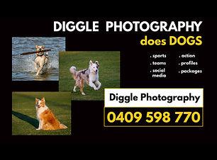 DigglePhotographyLogoWeb.jpg
