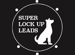 SuperLockUpLeadsLogoWeb.jpg