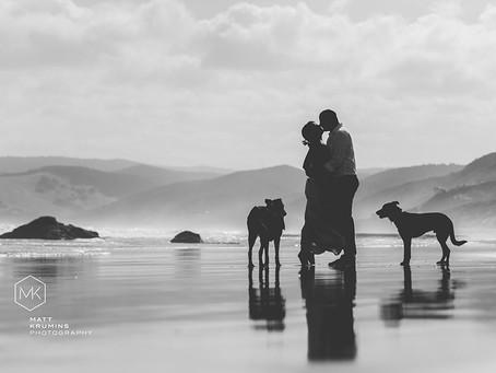 Guest Post: Eight steps to a VERY special day at the dog beach