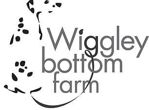 Wiggles_logoWeb.jpg