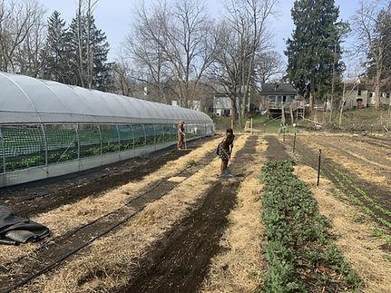 Magnolia Farms Fox News.jpeg