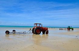 Tracteur 1.jpg