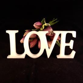 20cm x 8cm LOVE sign - $45