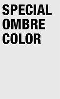 SPECIAL COLOR OMBRE.jpg