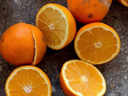 Orange Scones 1/2 doz