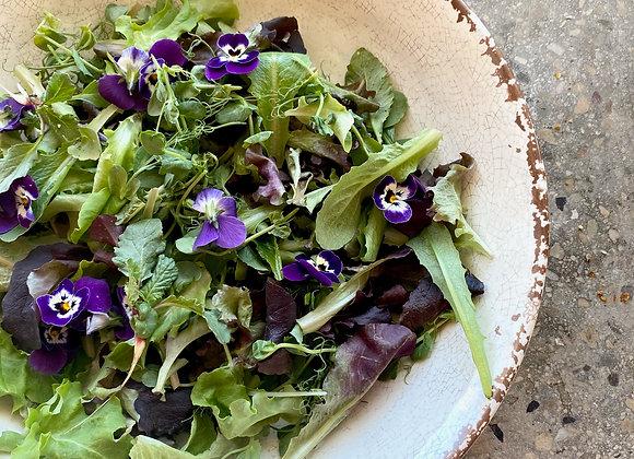 Spring Salad Kit
