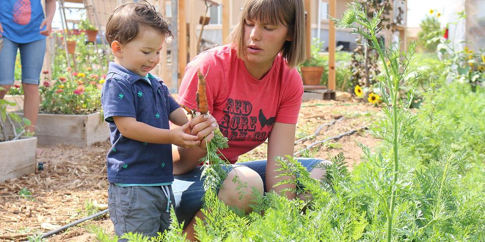 Farm tour geared for kids