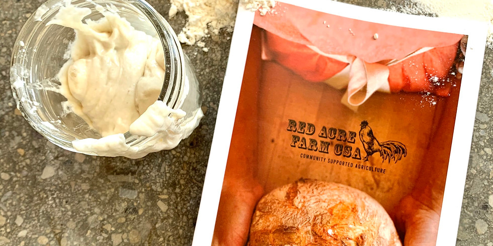 Learning to Make and Bake Sourdough Bread