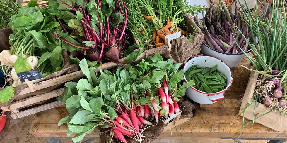 St George Farmers Market