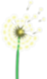 dandle lion flower.png