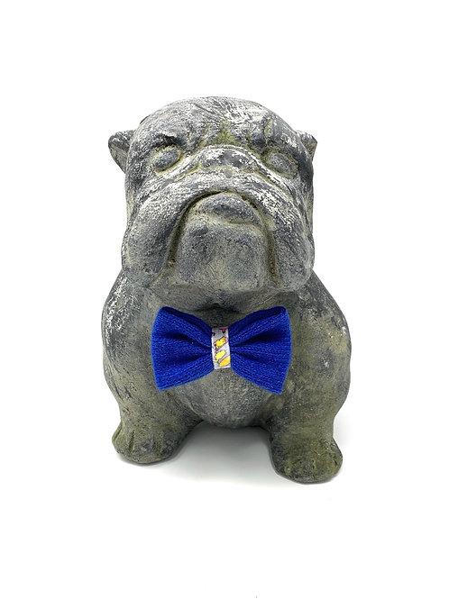 Daryn + Royal Blue - Dog Bow Tie