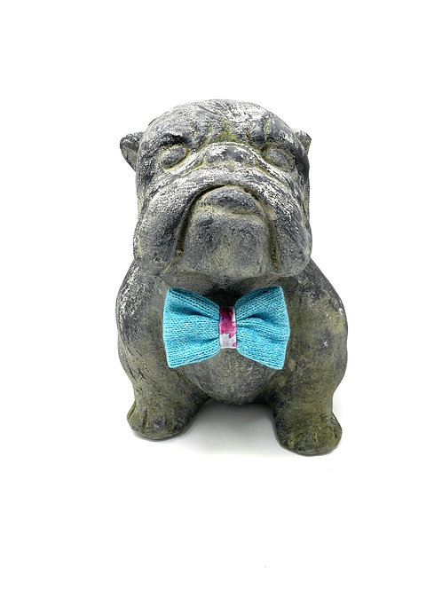 Daryn + Turquoise - Dog Bow Tie