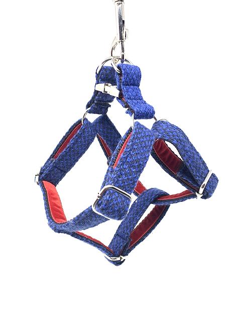 Royal Blue & Navy - Harris Design - Dog Harness