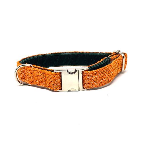 Orange Sparkle - Block Design Dog Collar