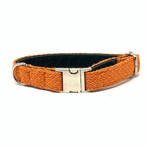 Orange Sparkle - Harris Design Dog Collar