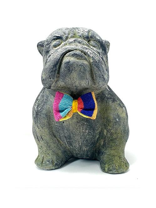 Rainbow - Dog Bow Tie