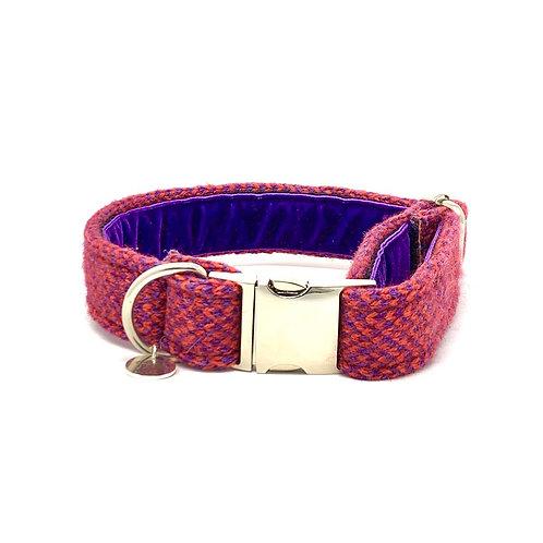 Geranium & Purple - Harris Design - Dog Collar